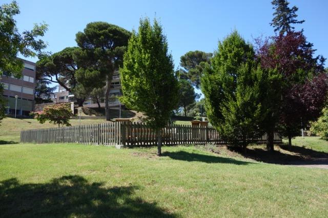 urban quartier Ancely : son parc aux arbres centenaires